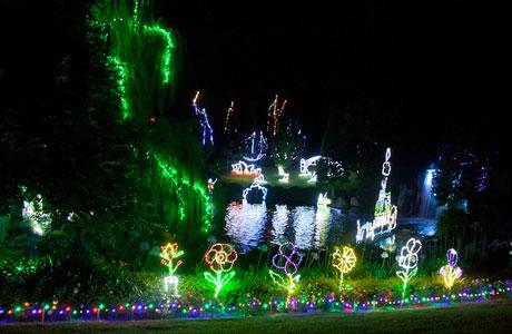 Christmas Lights at Hunter Valley Gardens - Christmas Lights At Hunter Valley Gardens Around Hermitage, Pokolbin