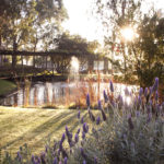 Hunter Valley Resort accom