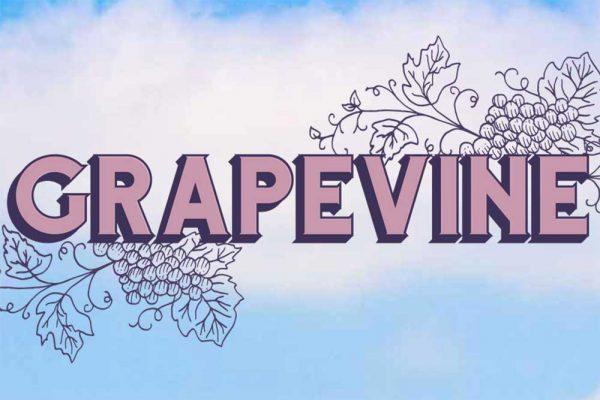 Grapevine Australia's Wine & Music Pairing, Roche Estate Hunter Valley